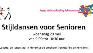 Dansen voor Senioren, banner site